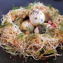 Quails egg birds nest, truffle dressing, asparagus shavings
